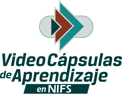 Video Cápsulas de Aprendizaje en NIF